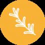 icon-erbe